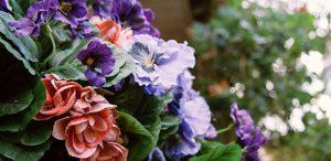 זרי פרחים סגולים