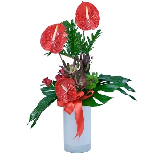 סידור פרחי אנטוריום