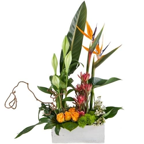 סידור פרחים אקזוטי
