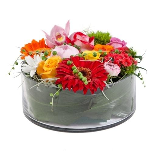 סידור פרחים קומפוזיציה צבעונית
