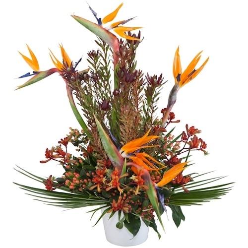 סידור פרחים ציפורי גן עדן
