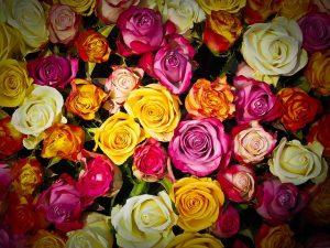 תמונה של זרי פרחים יוקרתיים