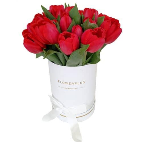flower box טוליפים - משלוחי פרחים בראשון לציון